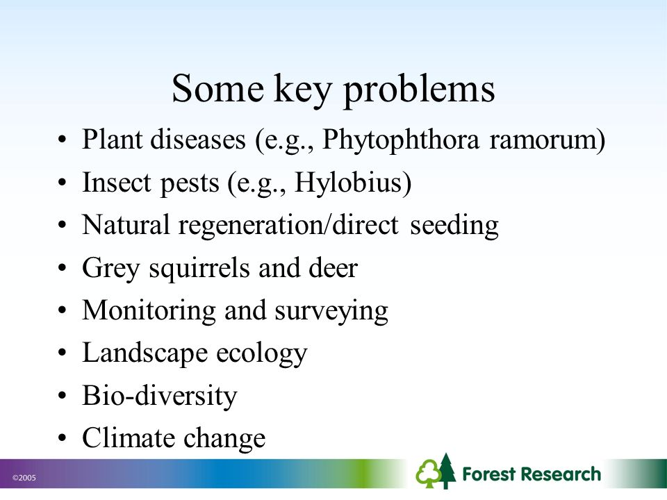 Some key problems Plant diseases (e.g., Phytophthora ramorum) Insect pests (e.g., Hylobius) Natural regeneration/direct seeding Grey squirrels and deer Monitoring and surveying Landscape ecology Bio-diversity Climate change