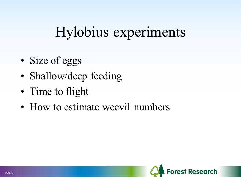 Hylobius experiments Size of eggs Shallow/deep feeding Time to flight How to estimate weevil numbers