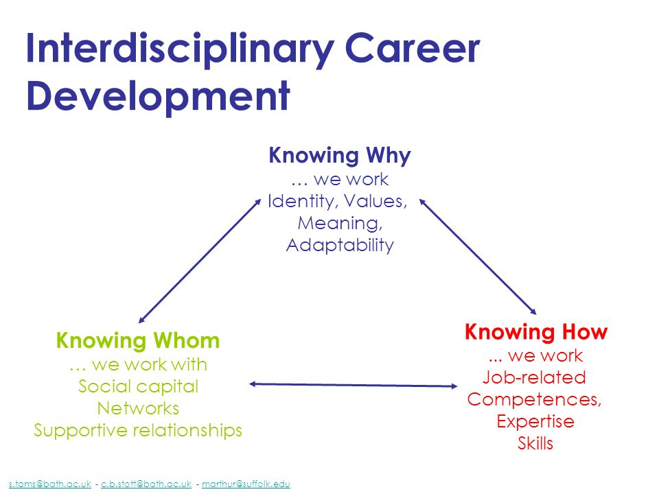 Interdisciplinary Career Development Knowing How... we work Job-related Competences, Expertise Skills Knowing Why … we work Identity, Values, Meaning,