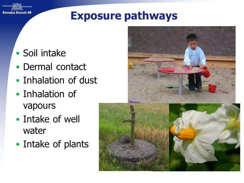 Exposure pathways Soil intake Dermal contact Inhalation of dust Inhalation of vapours Intake of well water Intake of plants