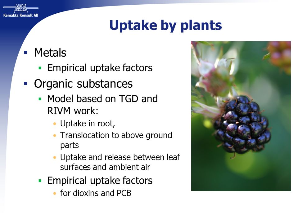Uptake by plants Metals Empirical uptake factors Organic substances Model based on TGD and RIVM work: Uptake in root, Translocation to above ground pa