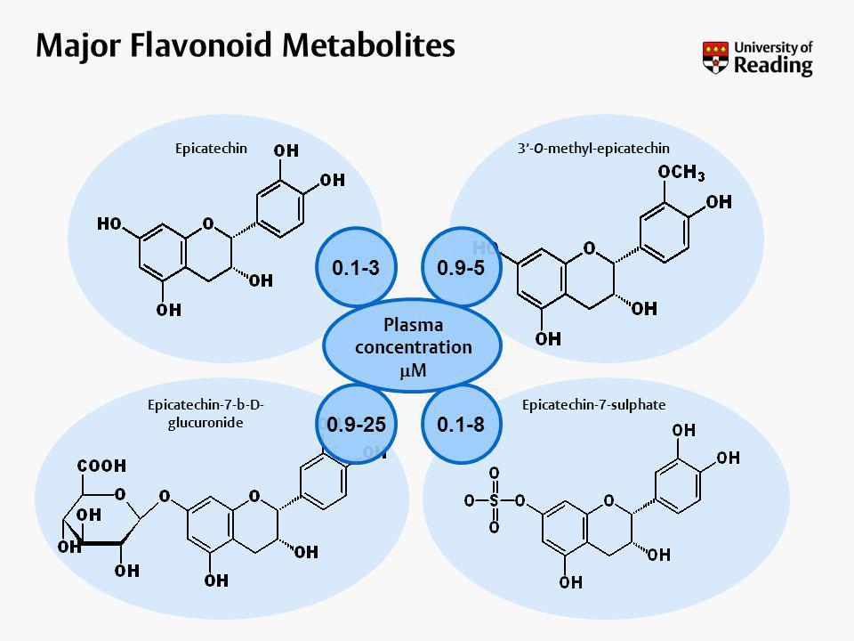 3- O -methyl-epicatechin Epicatechin-7-sulphateEpicatechin-7-b-D- glucuronide Epicatechin 0.1-3 0.9-25 0.1-8 0.9-5 Plasma concentration M Major Flavon