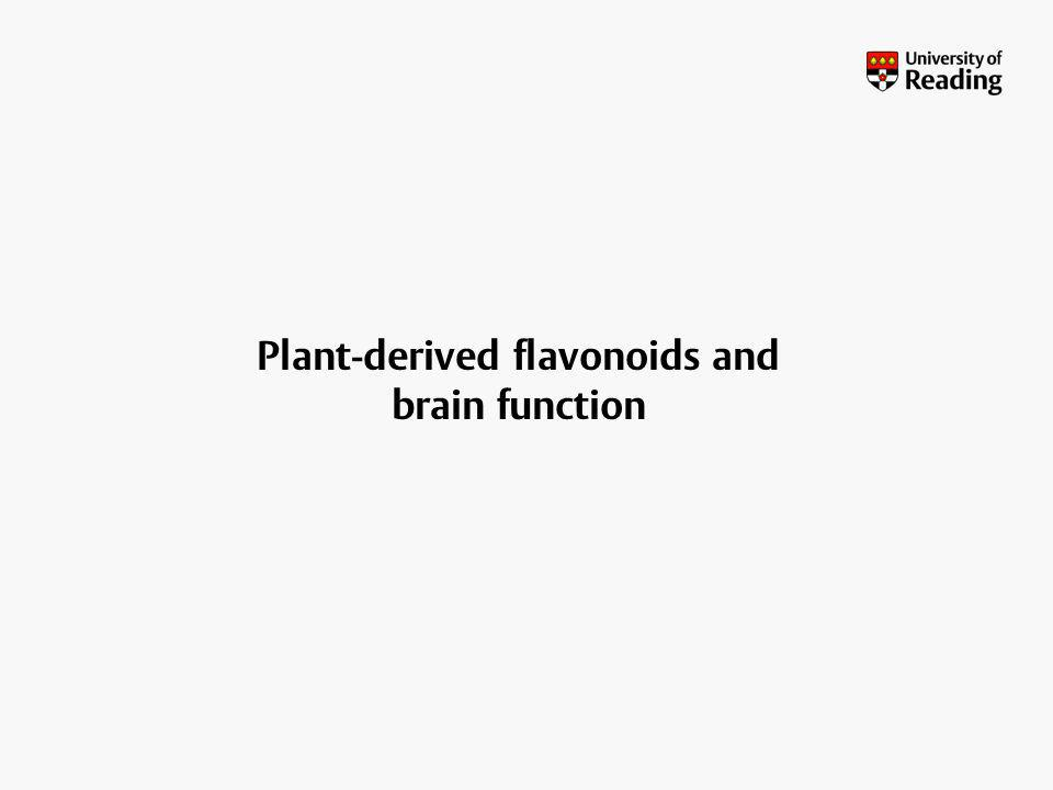 Plant-derived flavonoids and brain function