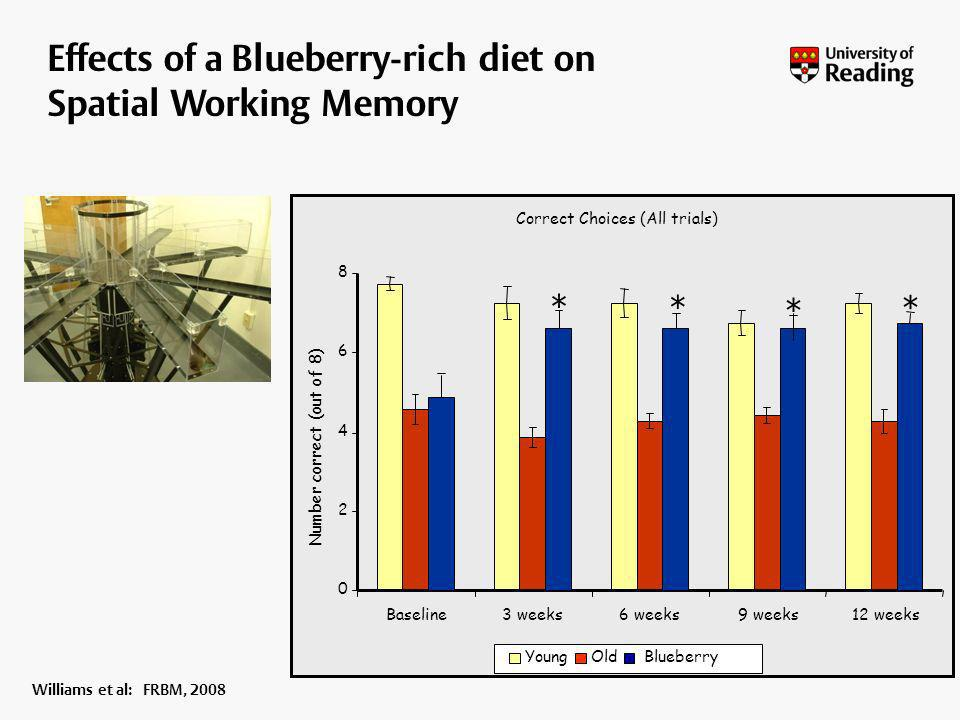 Correct Choices (All trials) 0 2 4 6 8 Baseline3 weeks6 weeks9 weeks12 weeks Number correct (out of 8) YoungOld Effects of a Blueberry-rich diet on Sp