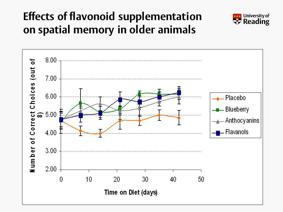 Effects of flavonoid supplementation on spatial memory in older animals