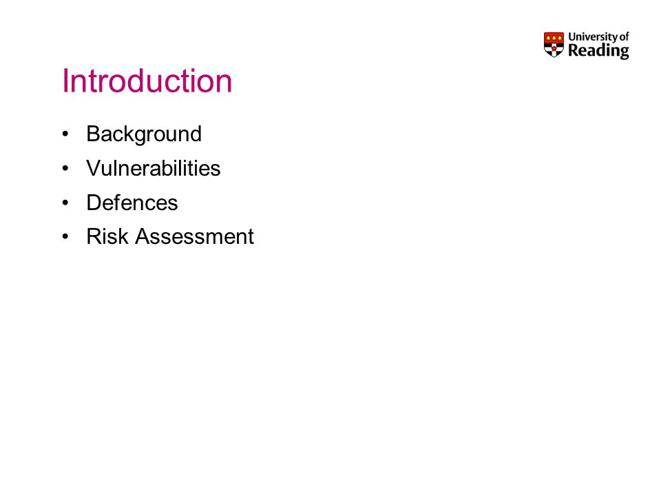 Introduction Background Vulnerabilities Defences Risk Assessment