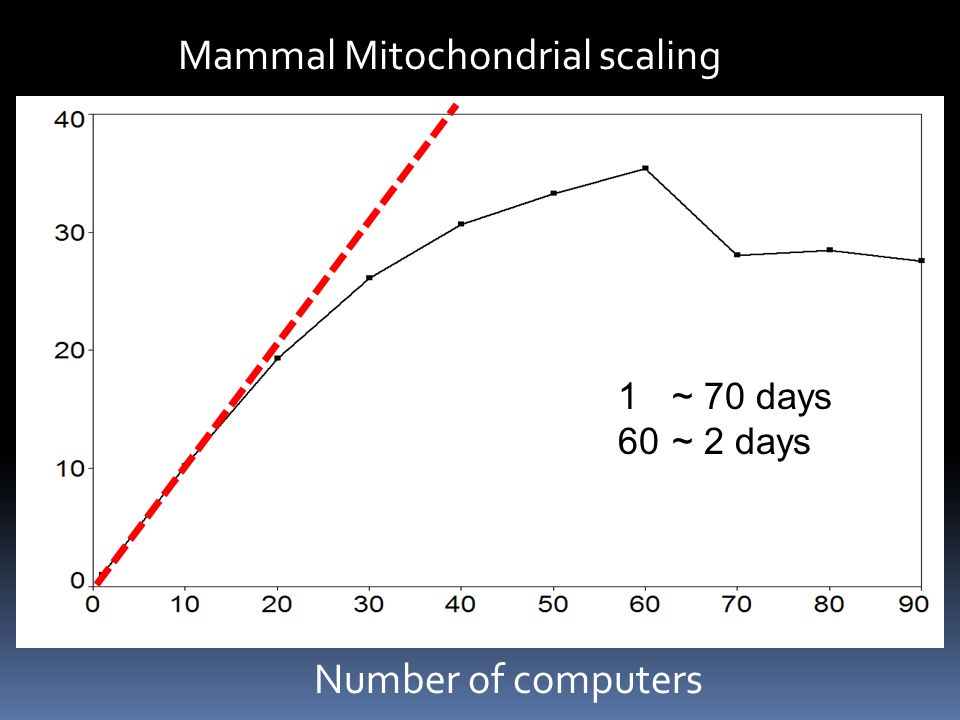 Number of computers 1~ 70 days 60~ 2 days Mammal Mitochondrial scaling x x x x