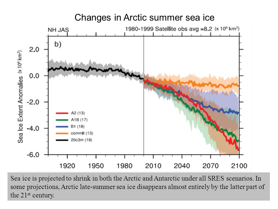 Sea ice is projected to shrink in both the Arctic and Antarctic under all SRES scenarios.