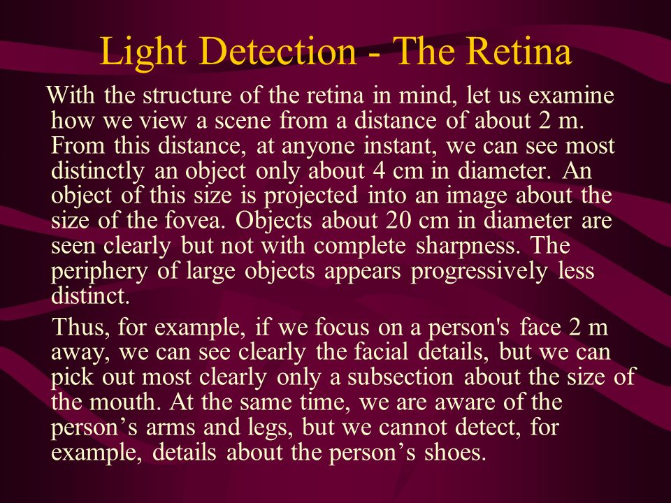 Light Detection - The Retina With the structure of the retina in mind, let us examine how we view a scene from a distance of about 2 m. From this dist