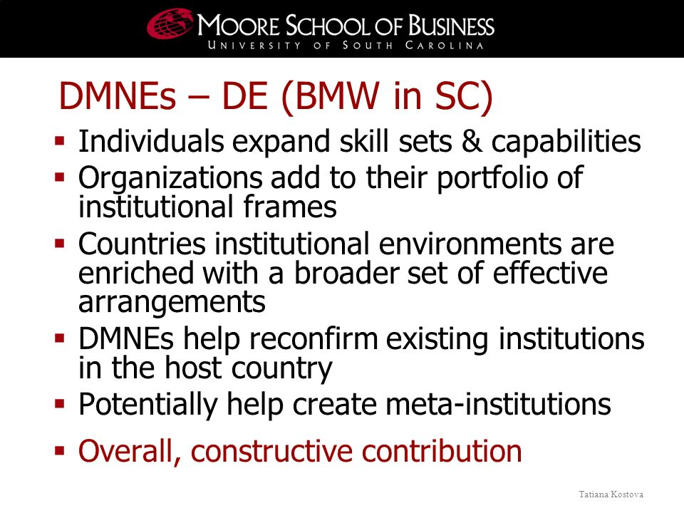 Tatiana Kostova DMNEs – DE (BMW in SC) Individuals expand skill sets & capabilities Organizations add to their portfolio of institutional frames Count