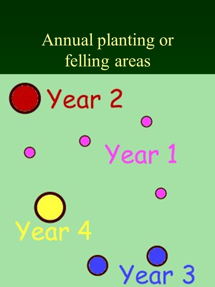 Annual planting or felling areas