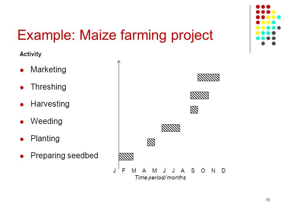 15 Example: Maize farming project Activity Marketing Threshing Harvesting Weeding Planting Preparing seedbed J F M A M J J A S O N D Time period/ mont