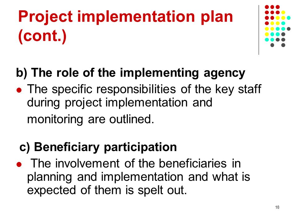 18 Project implementation plan (cont.) b) The role of the implementing agency The specific responsibilities of the key staff during project implementa