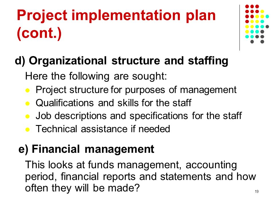 19 Project implementation plan (cont.) d) Organizational structure and staffing Here the following are sought: Project structure for purposes of manag