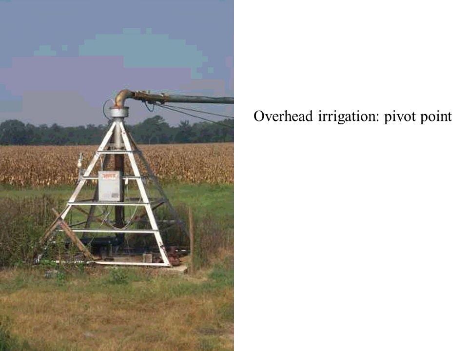 Overhead irrigation: pivot point