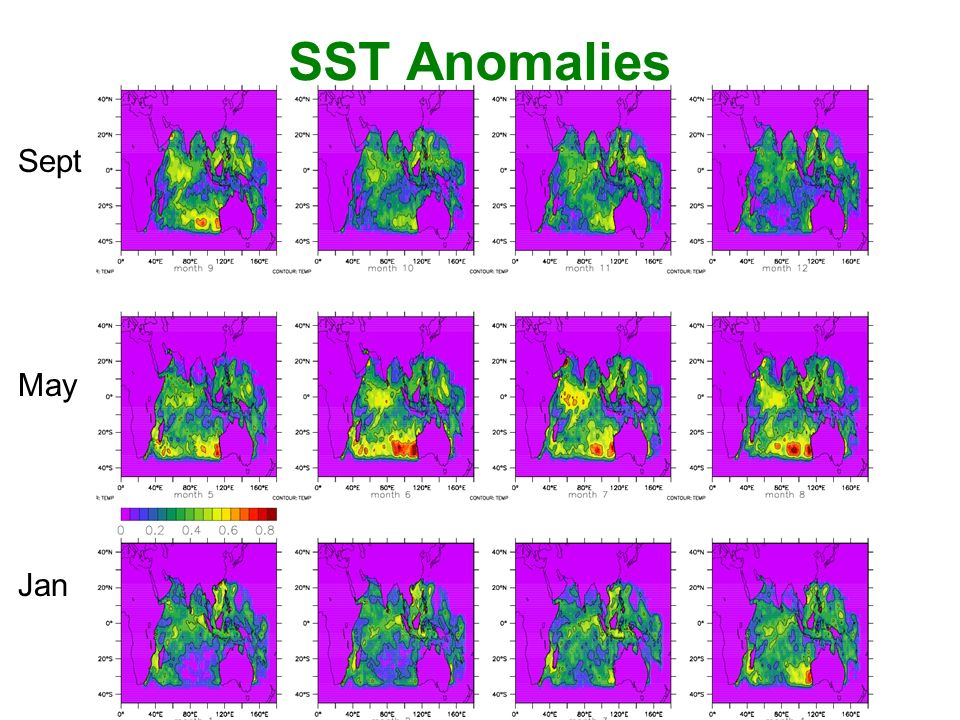Jan May Sept SST Anomalies