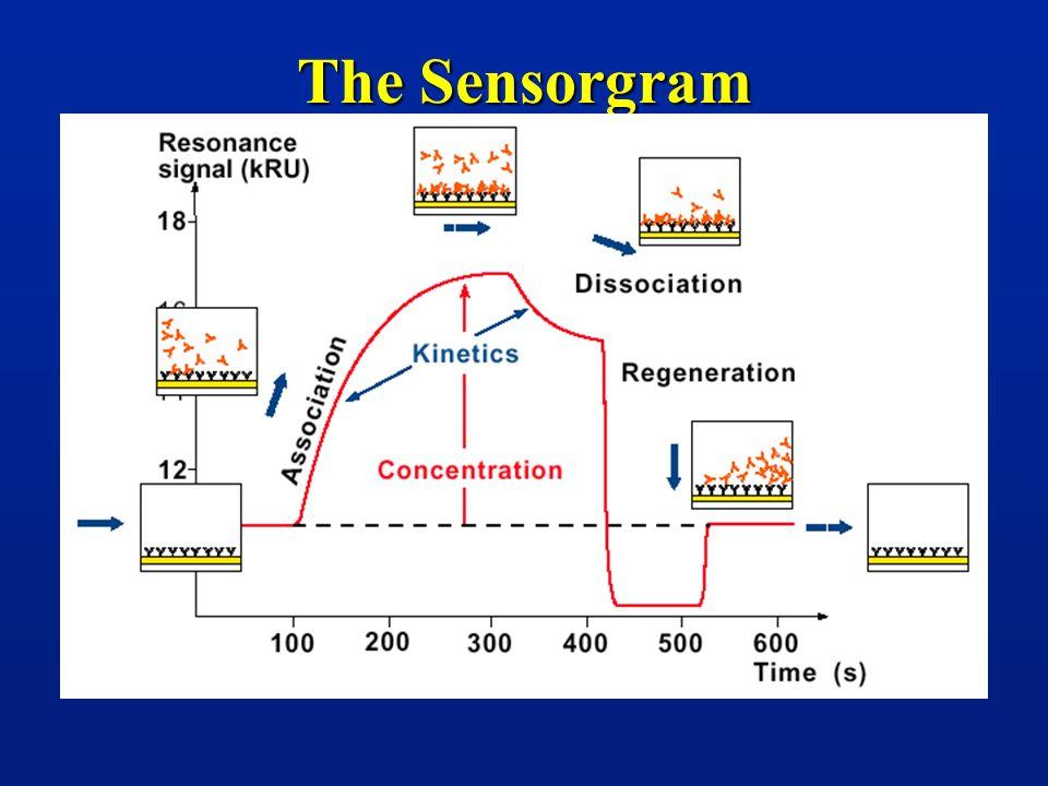 The Sensorgram