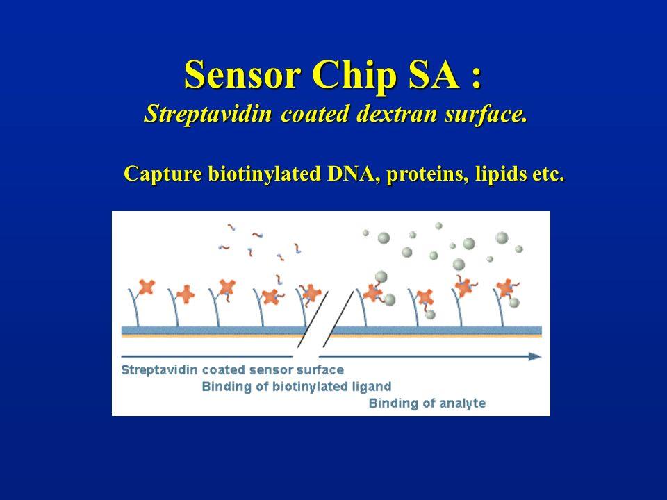 Sensor Chip SA : Streptavidin coated dextran surface. Capture biotinylated DNA, proteins, lipids etc.