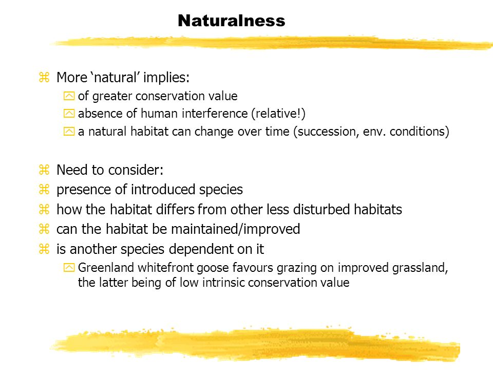Naturalness zMore natural implies: yof greater conservation value yabsence of human interference (relative!) ya natural habitat can change over time (