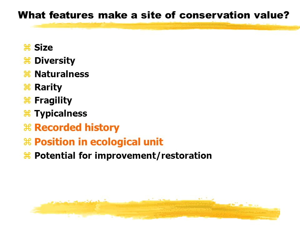 What features make a site of conservation value? zSize zDiversity zNaturalness zRarity zFragility zTypicalness zRecorded history zPosition in ecologic