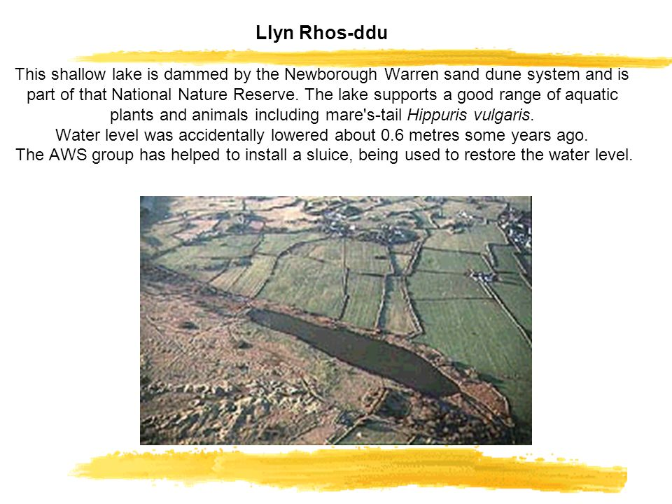 Llyn Rhos-ddu This shallow lake is dammed by the Newborough Warren sand dune system and is part of that National Nature Reserve.