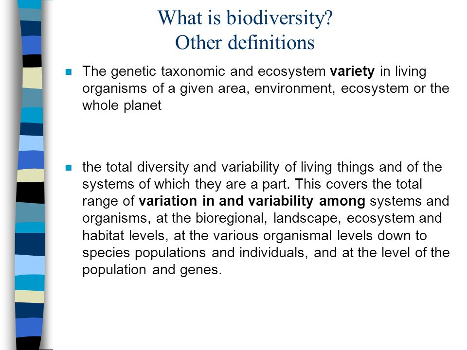 What is biodiversity.