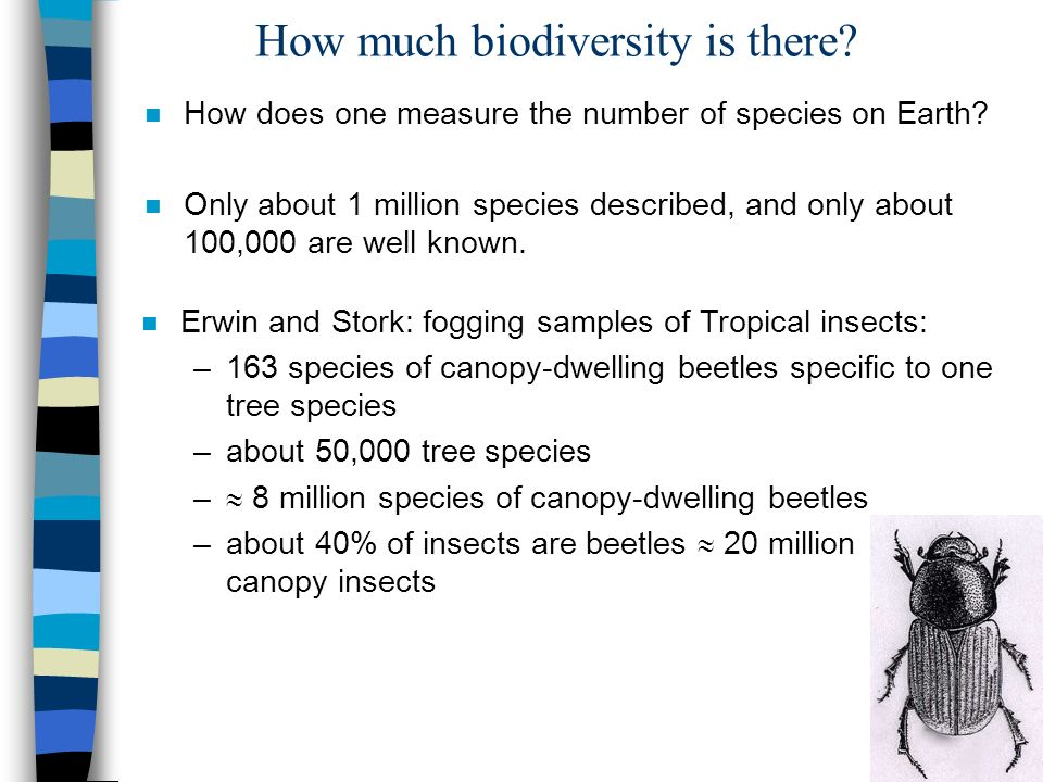 How much biodiversity is there. n How does one measure the number of species on Earth.