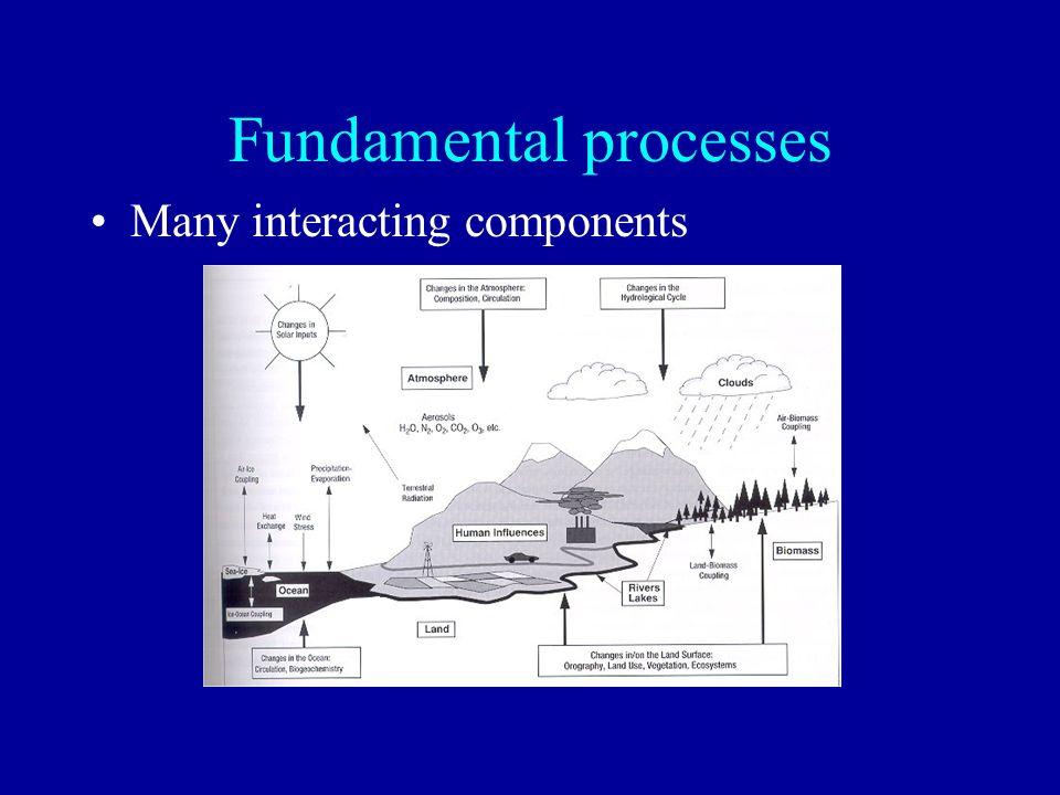Fundamental processes Many interacting components