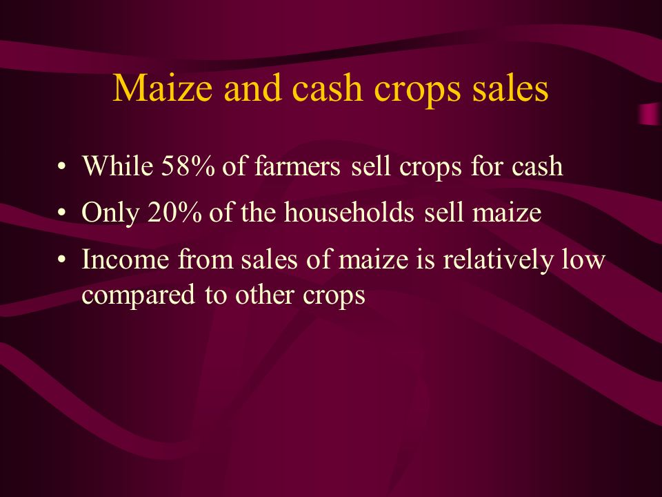 Maize and cash crops sales While 58% of farmers sell crops for cash Only 20% of the households sell maize Income from sales of maize is relatively low