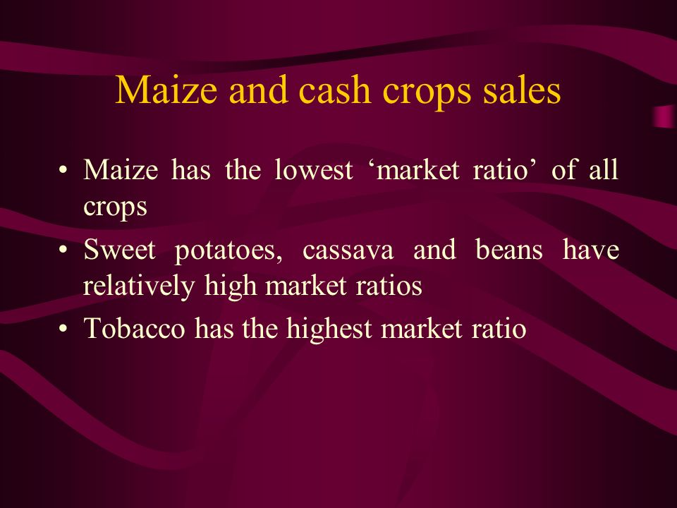 Maize and cash crops sales Maize has the lowest market ratio of all crops Sweet potatoes, cassava and beans have relatively high market ratios Tobacco has the highest market ratio