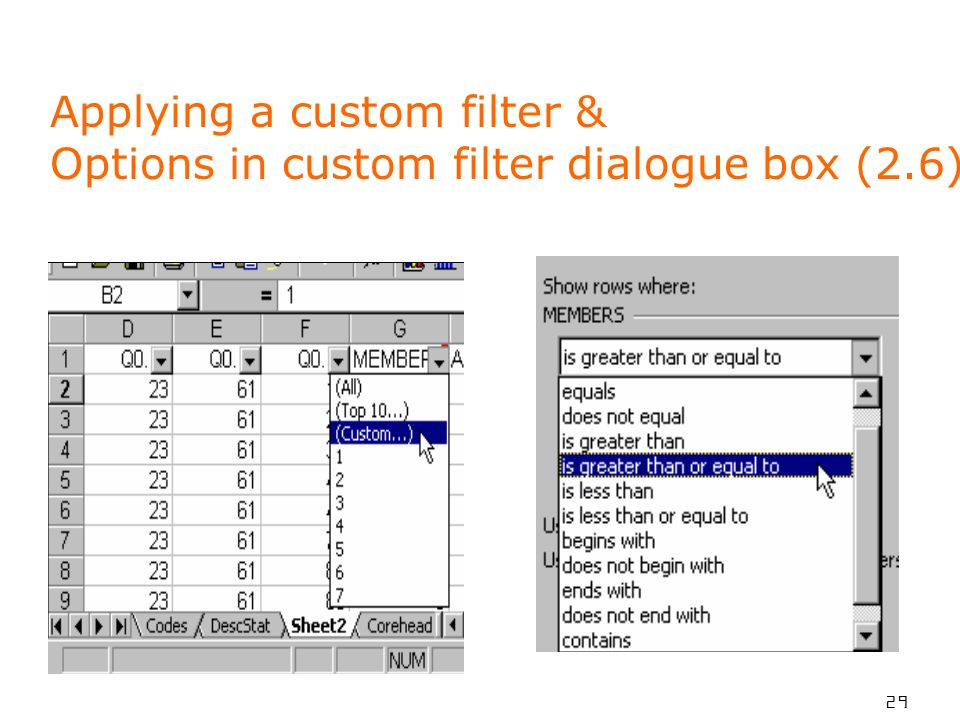 29 Applying a custom filter & Options in custom filter dialogue box (2.6)