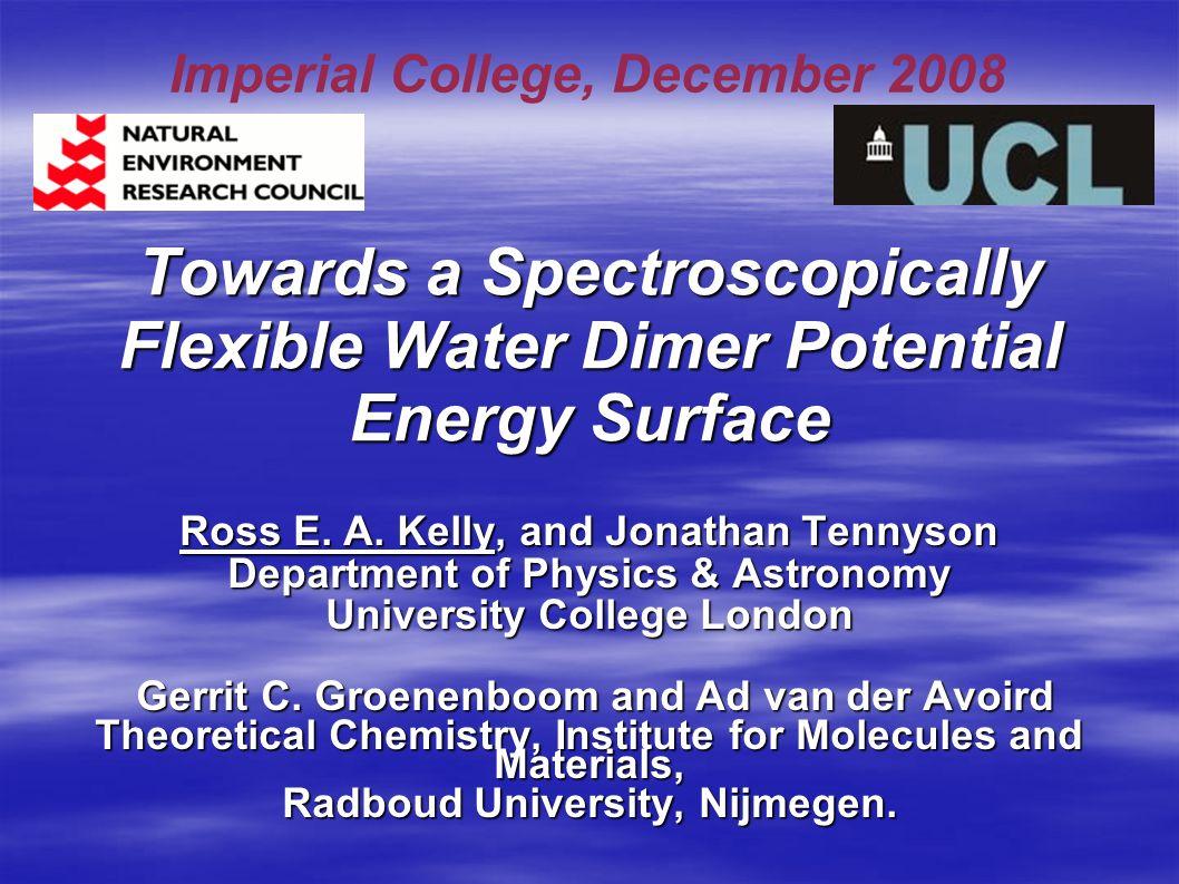 Towards a Spectroscopically Flexible Water Dimer Potential Energy Surface Ross E.