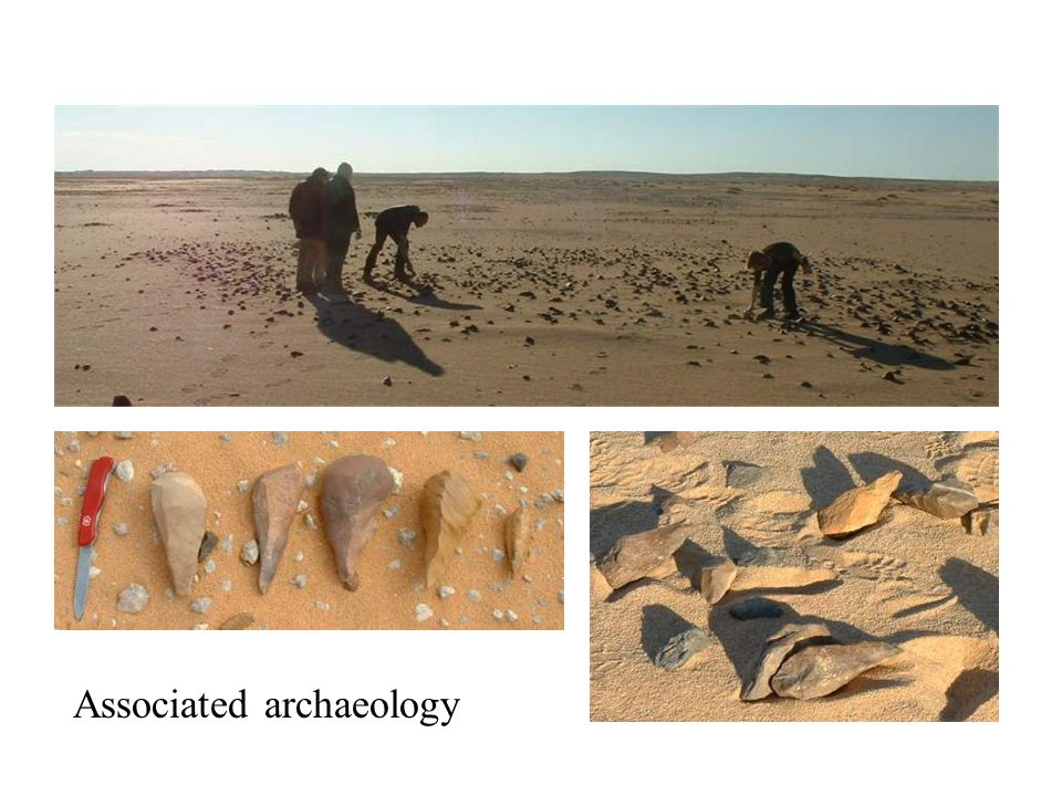 Associated archaeology