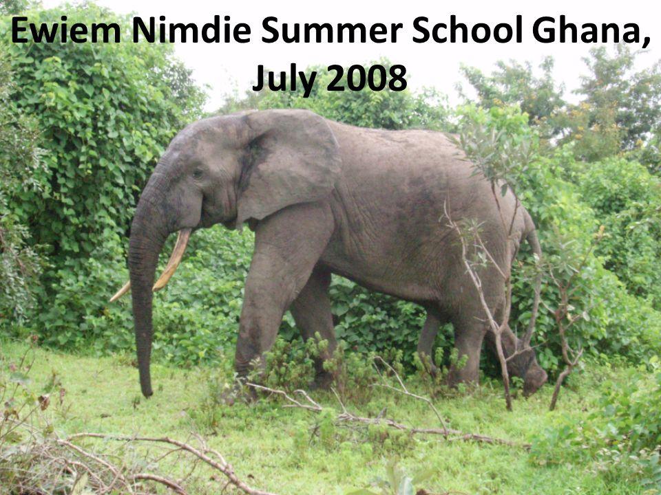 Ewiem Nimdie Summer School Ghana, July 2008