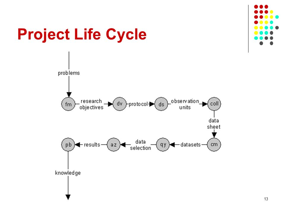 Project Life Cycle 13