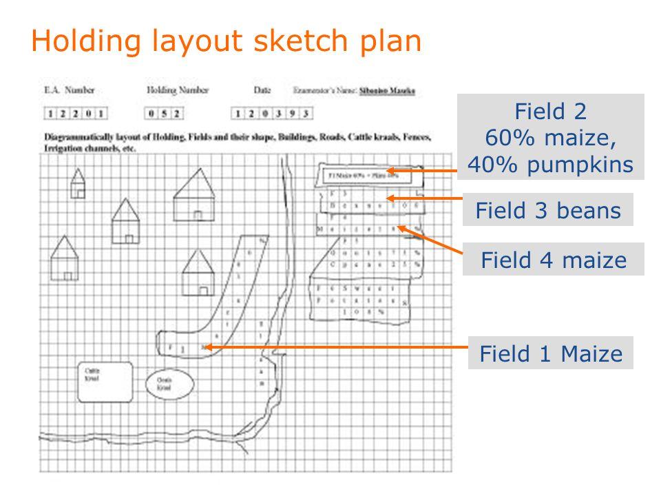 Holding layout sketch plan Field 1 Maize Field 2 60% maize, 40% pumpkins Field 4 maize Field 3 beans