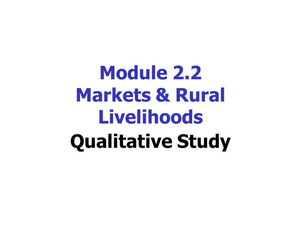 Qualitative Methods Language Case Studies Diversity* * In part 2 of report, not in presentation