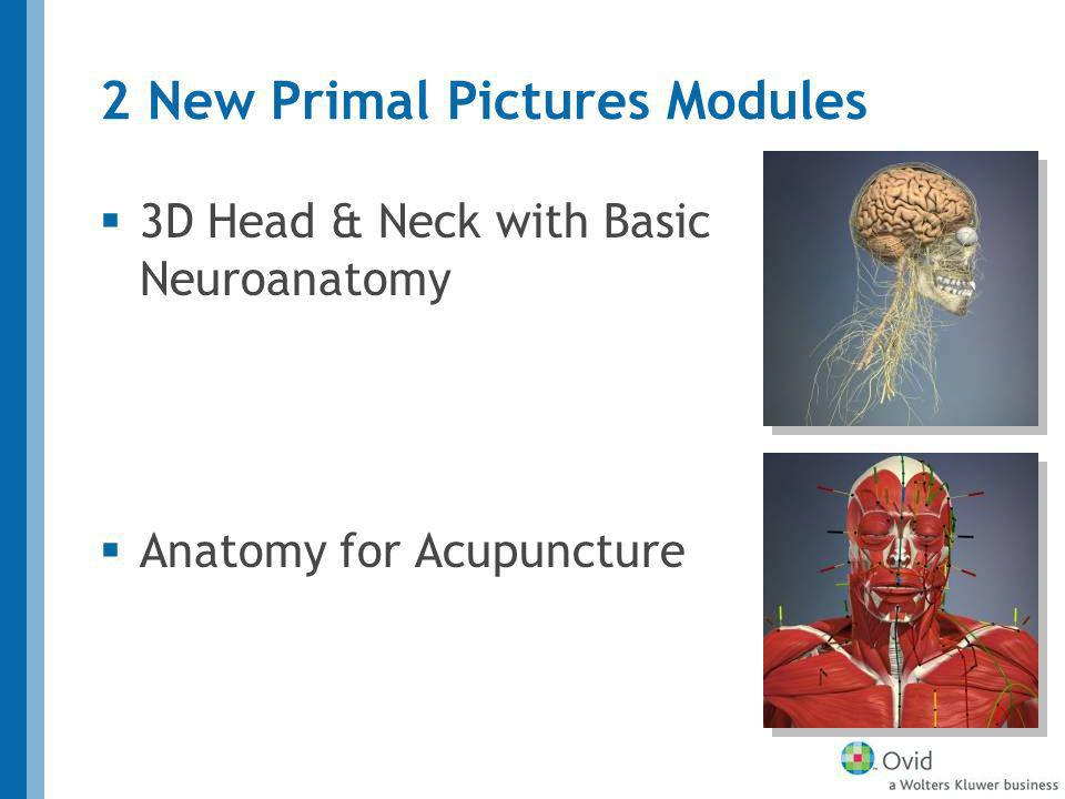 2 New Primal Pictures Modules 3D Head & Neck with Basic Neuroanatomy Anatomy for Acupuncture
