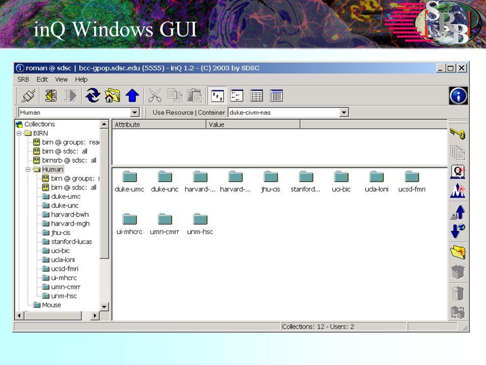 inQ Windows GUI