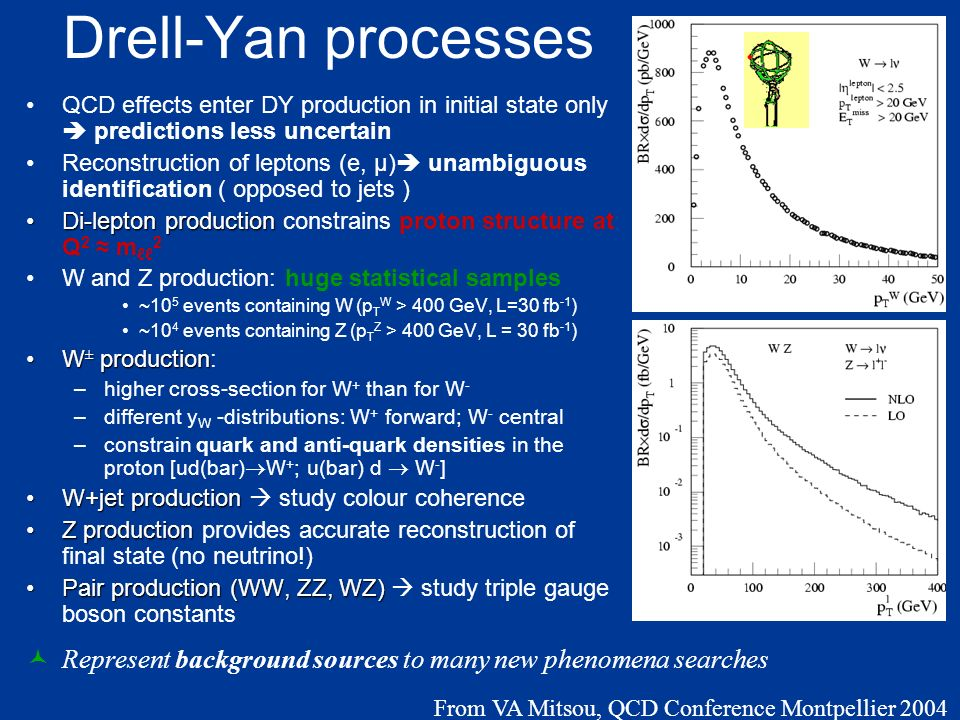 Drell-Yan processes QCD effects enter DY production in initial state only predictions less uncertain Reconstruction of leptons (e, μ) unambiguous identification ( opposed to jets ) Di-lepton productionDi-lepton production constrains proton structure at Q 2 m 2 W and Z production: huge statistical samples ~10 5 events containing W (p T W > 400 GeV, L=30 fb -1 ) ~10 4 events containing Z (p T Z > 400 GeV, L = 30 fb -1 ) W ± productionW ± production: –higher cross-section for W + than for W - –different y W -distributions: W + forward; W - central –constrain quark and anti-quark densities in the proton [ud(bar) W + ; u(bar) d W - ] W+jet productionW+jet production study colour coherence Z productionZ production provides accurate reconstruction of final state (no neutrino!) Pair production (WW, ZZ, WZ)Pair production (WW, ZZ, WZ) study triple gauge boson constants p T miss >20 GeV |η |<2.5 NLO calculation Represent background sources to many new phenomena searches From VA Mitsou, QCD Conference Montpellier 2004