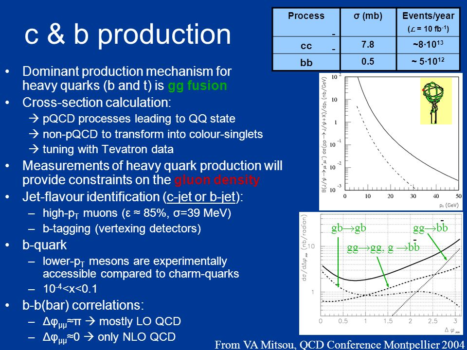 c & b production Dominant production mechanism for heavy quarks (b and t) is gg fusion Cross-section calculation: pQCD processes leading to QQ state non-pQCD to transform into colour-singlets tuning with Tevatron data Measurements of heavy quark production will provide constraints on the gluon density Jet-flavour identification (c-jet or b-jet): –high-p T muons (ε 85%, σ=39 MeV) –b-tagging (vertexing detectors) b-quark –lower-p T mesons are experimentally accessible compared to charm-quarks –10 -4 <x<0.1 b-b(bar) correlations: –Δφ μμπ mostly LO QCD –Δφ μμ0 only NLO QCD Processσ (mb)Events/year ( L = 10 fb -1 ) cc 7.8~8·10 13 bb 0.5~ 5·10 12 - - ψ´ψ´ J/ψ gb gg bb - gg gg, g bb - From VA Mitsou, QCD Conference Montpellier 2004