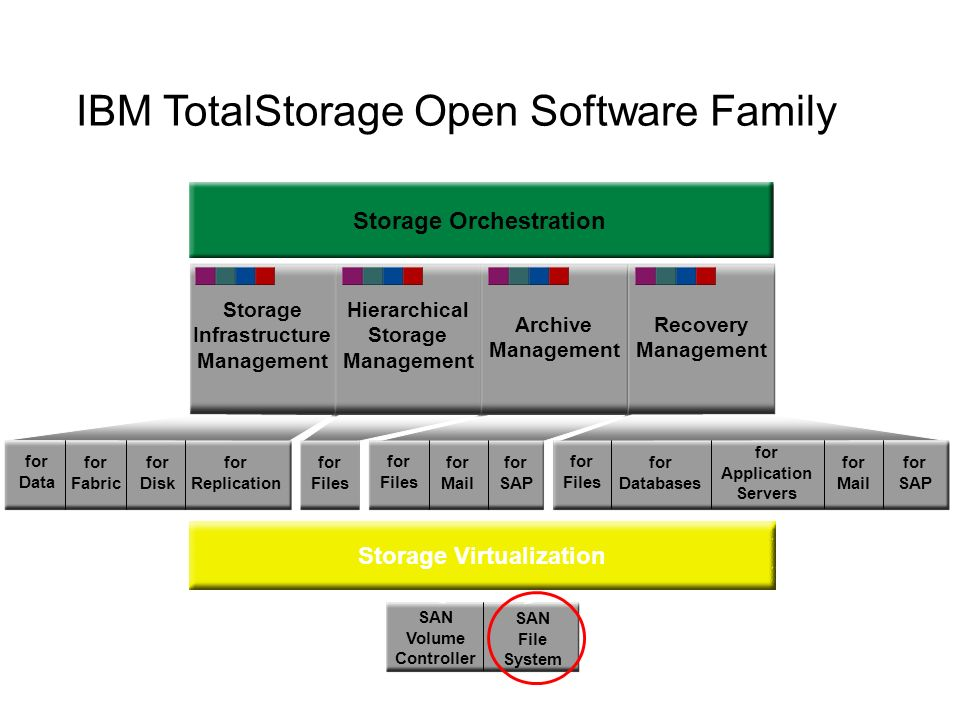 Storage Infrastructure Management Hierarchical Storage Management Archive Management Recovery Management Storage Orchestration for Data for Fabric for Disk for Replication for Files for Mail for SAP for Files for Databases for Mail for SAP for Application Servers SAN Volume Controller SAN File System Storage Virtualization IBM TotalStorage Open Software Family