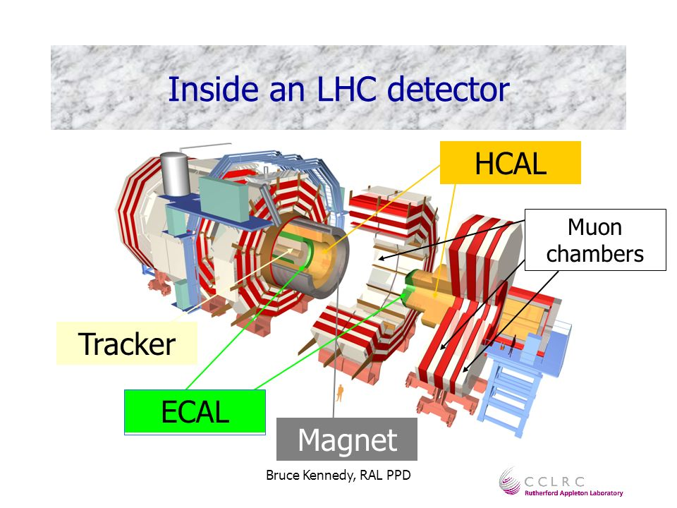Bruce Kennedy, RAL PPD Inside an LHC detector ECAL Tracker HCAL Magnet Muon chambers