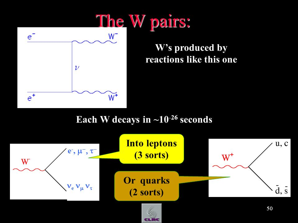 50 The W pairs: Ws produced by reactions like this one Each W decays in ~10 -26 seconds Or quarks (2 sorts) e -, e Into leptons (3 sorts)