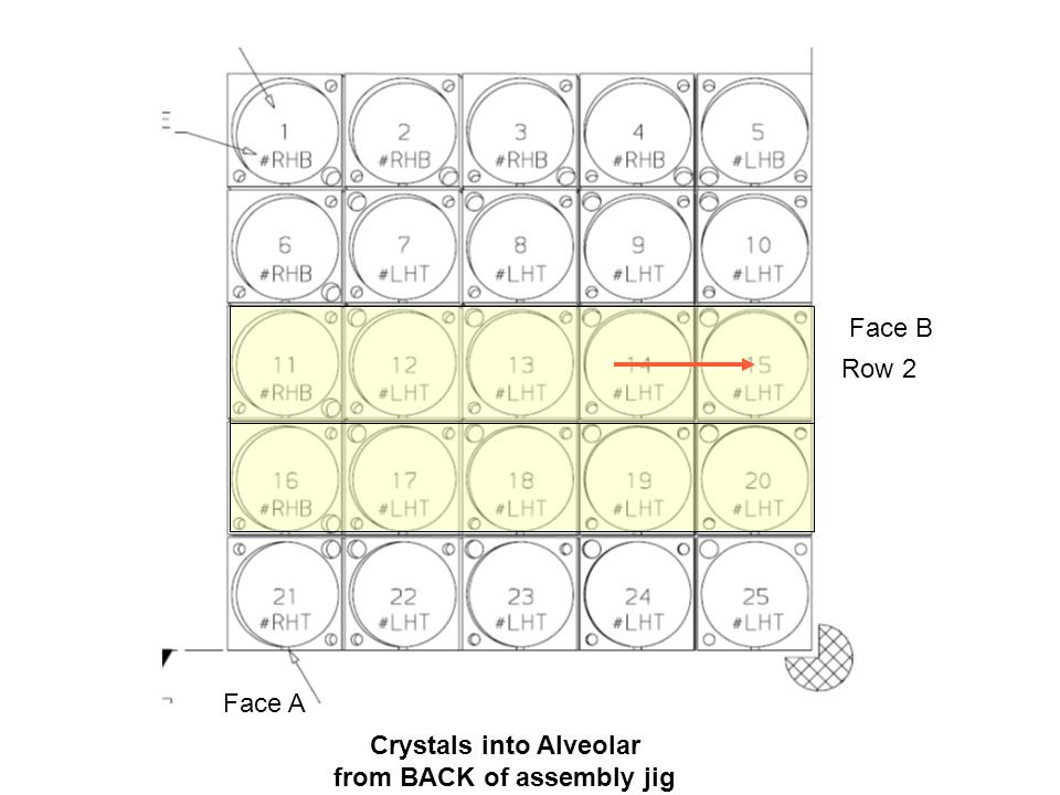 Crystals into Alveolar from BACK of assembly jig Face B Face A Row 2