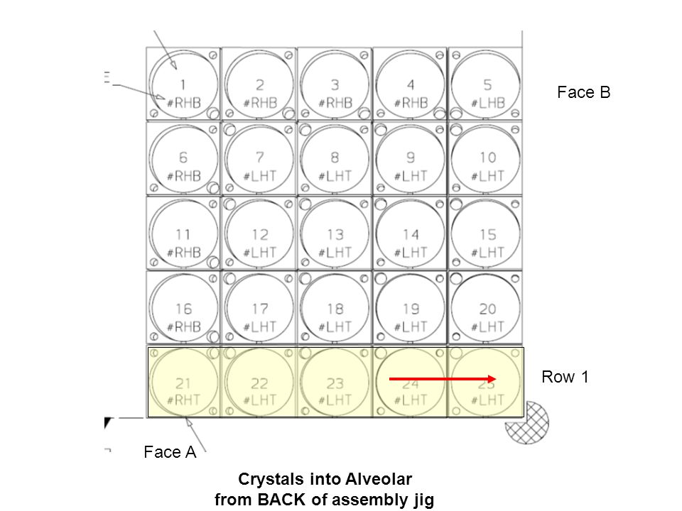 Crystals into Alveolar from BACK of assembly jig Face B Face A Row 4