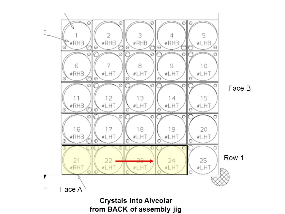 Crystals into Alveolar from BACK of assembly jig Face B Face A Row 1