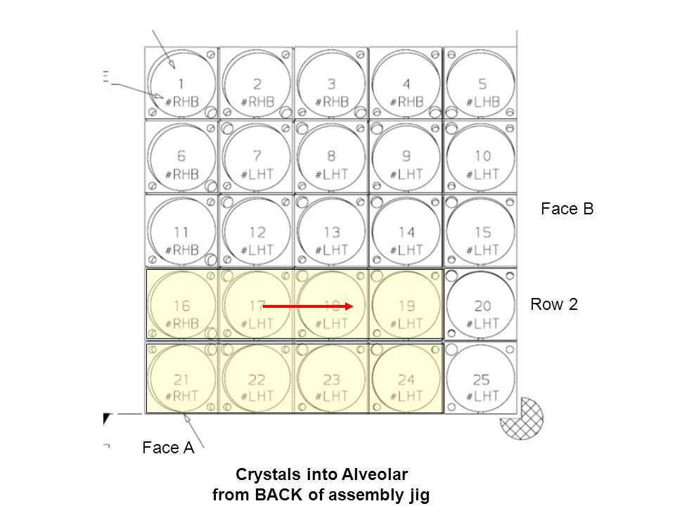 Crystals into Alveolar from BACK of assembly jig Face B Face A Row 3