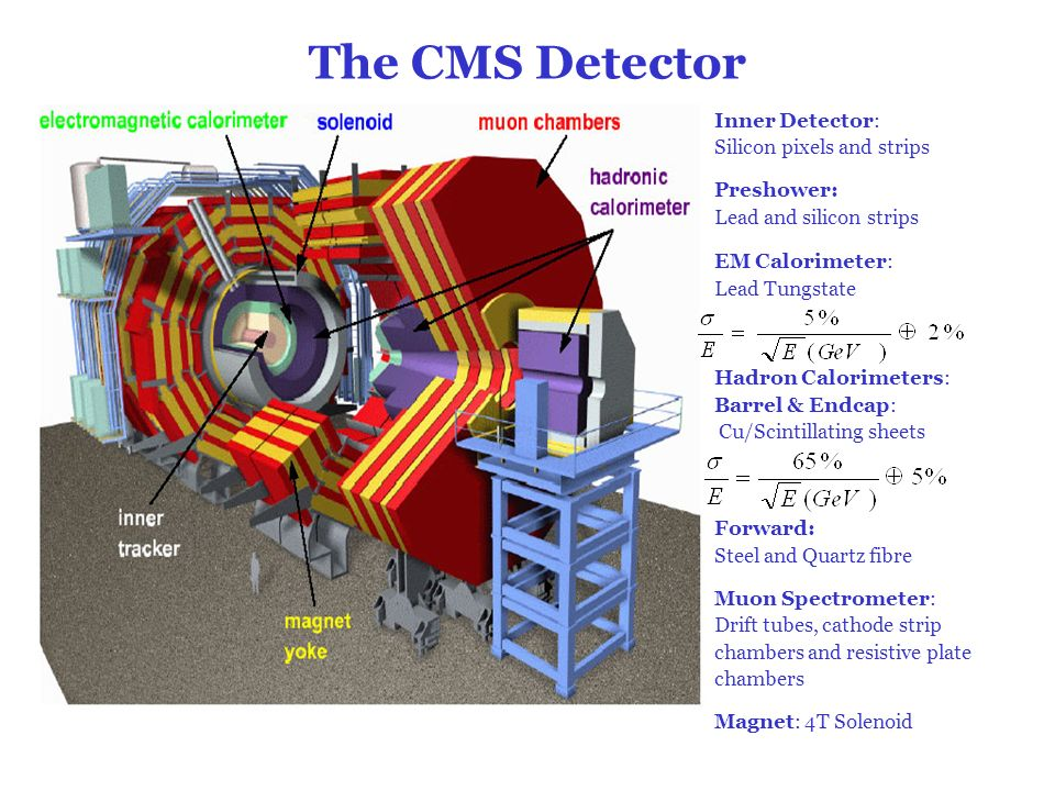 The CMS Detector Inner Detector: Silicon pixels and strips Preshower: Lead and silicon strips EM Calorimeter: Lead Tungstate Hadron Calorimeters: Barr