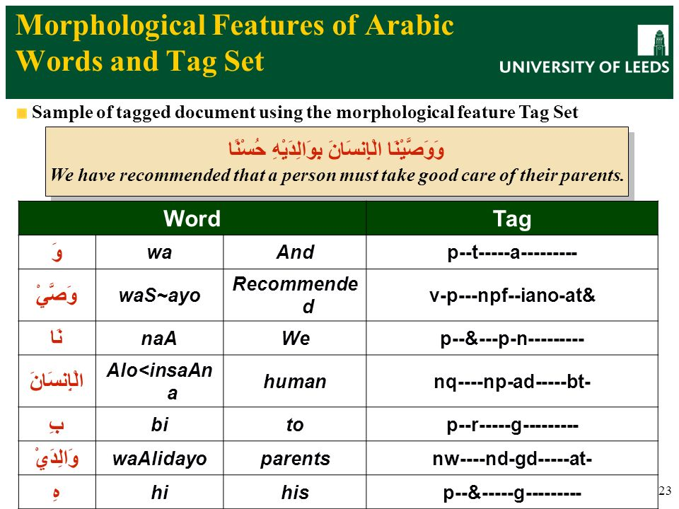 23 Morphological Features of Arabic Words and Tag Set Sample of tagged document using the morphological feature Tag Set وَوَصَّيْنَا الْإِنسَانَ بِوَا